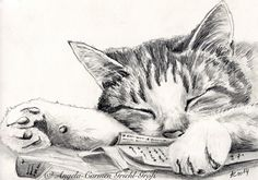 t-ist-art.b -Charcoal Cat t-ist-art.b -Cat t-ist-art.b -Charcoal Cat t-ist-art. Cat Drawing, Drawing Sketches, Painting & Drawing, Drawing Faces, Manga Drawing, Drawing Tips, Sketching, Animal Sketches, Animal Drawings