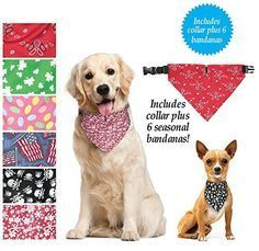 Dog Clothing Seasonal Dog Bandana Collar, Set of 6 - Learn to make a dog bandana with a casing. It's a quick sew project, plus this bandana is much safer for your dog to wear! Please read on for my step by step tutorial complete with pictures. Dog Collar Bandana, Diy Dog Collar, Dog Collars, Bandana For Dogs, Dog Crafts, Dog Items, Dog Pattern, Free Pattern, Pattern Ideas