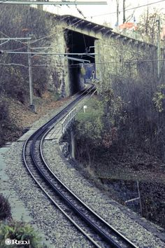 Train is coming Alps, Railroad Tracks, Switzerland, Skiing, Train, Landscape, Amazing, Nature, Life