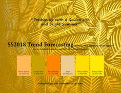 SS2018 trend forecasting on Behance