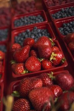 The Best Foods to Eat If You Have Sarcoidosis