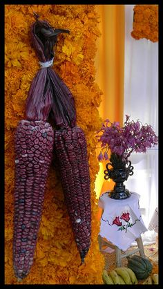 Maíz morado by MarthaRevueltaM, via Flickr