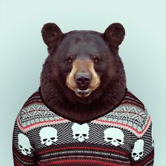 ZOO PORTRAITS by Yago Partal (BEAR by Yago Partal for ZOO PORTRAITS)
