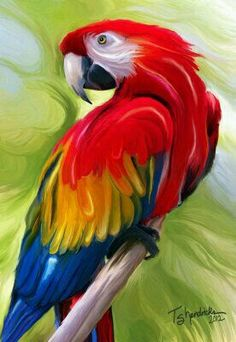 Perched Parrot Painting by Teresa S Hendricks Parrot Painting, Painting & Drawing, Wow Art, Animal Paintings, Bird Art, Painting Techniques, Beautiful Birds, Beautiful Pictures, Painting Inspiration