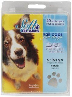 4172 best dog grooming supplies images dog grooming supplies pet rh pinterest com