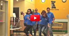 This Dog Can't Dance In Excitement At Being Adopted, So The Employees Do It For Him! | The Animal Rescue Site Blog
