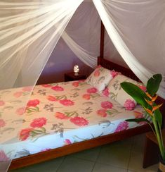 Casa Verde offers place for up to 8 people, is located about away from the beach and has a lot of place including a big, bright living room and a well euipped kitchen. 400m, Great Places, Toddler Bed, Bright, Living Room, Beach, Kitchen, People, Furniture
