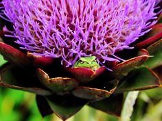 Explore Y*WADA's photos on Flickr. Y*WADA has uploaded 122 photos to Flickr.