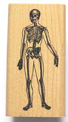 Nature's Blessings Fine Art Stamps, Skeleton