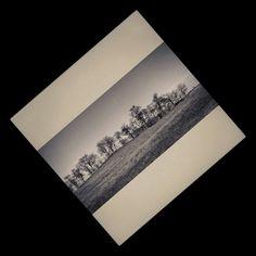 Kurgán a Hortobágyon - mobilfotó több eszköz segítségével átalakítva. #nature #photography #minimal #landscape #Hortobágy #puszta #steppe #pampa #tree #trees #mobilephotography Minion, Land Scape, Ale, Nature Photography, Ale Beer, Minions, Nature Pictures, Wildlife Photography, Ales
