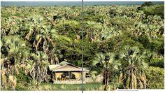 Le Chem Chem, en Tanzanie : ouvert sur la nature. À l'heure où les établissements haut de gamme fleurissent en Afrique, nous avons retenu les meilleures adresses du continent. Confort, exclusivité, intensité des expériences : autant d'exigences qui se donnent la rime, du désert namibien jusqu'aux steppes tanzaniennes en passant par les îles du lac Malawi.