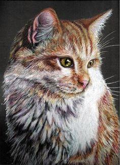 Commissioned Pet Portrait - 8 x 10 - Colored Pencil. $200.00, via Etsy.