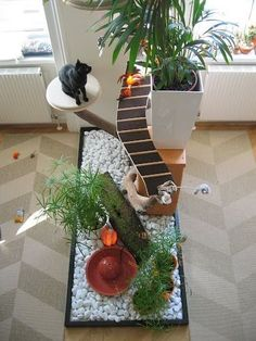 """An important part of cat care is providing cats with the resources and environment they need to thrive. This """"DIY cat island"""" goes far beyond the concept of a cat with, complete with a built-in garden for your kitty. Diy Cat Enclosure, Diy Cat Tree, Cat Trees, Cat Playground, Cat Garden, Cat Condo, Cat Room, Pet Furniture, Furniture Market"""