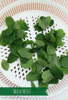 How To Freeze Mint - A Spoonful of Sugar
