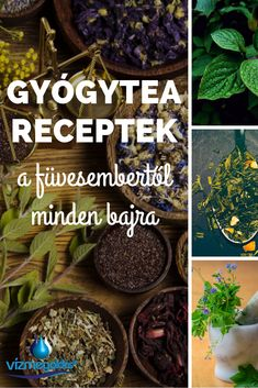 Gyógytea receptek a füvesembertől minden bajra Herbal Remedies, Home Remedies, Healthy Drinks, Healthy Eating, Yeast Overgrowth, Garden Paths, Interior Design Living Room, Minden, Herbalism