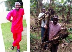 Why I gave up my BSc degree for farming