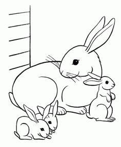 4570 bunny in flowers coloring pagejpg 543700 bunny rabbit coloring pinterest