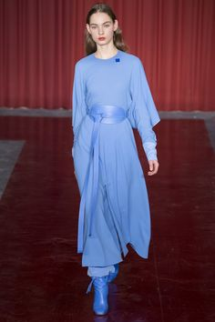 Roksanda Ilincic & Nicoll Blue  Fall 2017 Ready-to-Wear Fashion Show