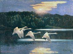 Lennart Segerstråle (1892-1975); Finnish: Swans in the Summernight http://www.metsastysmuseo.fi/nayttelyt/nayttelyt_2013/korpimailta/korpimailta.php