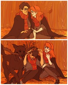 James and Lily and Sirius have some fun