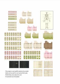 Free miniature printable // Medical Printable 2pages