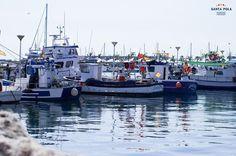 Puerto Pesquero Santa Pola