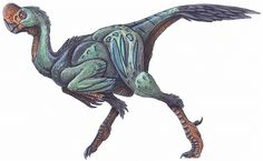 Rinchenia mongoliensis - aka Oviraptor mongoliensis