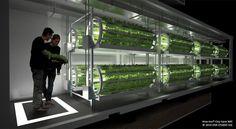 l'hypertechnologie au service des plantes   Le coin jardin