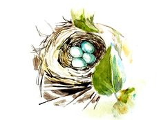 Bird nest  watercolor painting by MundoMeo on Etsy, $14.90
