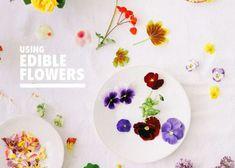 食べられるお花!「エディブルフラワー」を使ったお食事が可愛すぎて感動♡