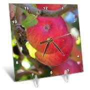 A close up of some red apples hanging in a tree in Pine Valley UT Desk Clock