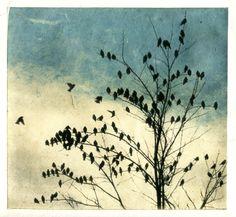 february visit, doves dip print series