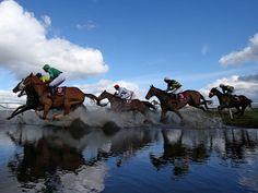 The field gallop through Joe's Water Splash at Punchestown.