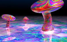 .colorful mushrooms