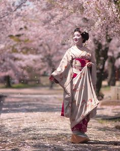 Cherry blossoms and Geisha. Geisha Japan, Geisha Art, Kyoto Japan, Tokyo Japan, Japanese Kimono, Japanese Art, Japanese Dresses, Japanese Beauty, Asian Beauty