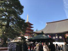 初詣⛩ Hatsumoude 🇯🇵✨