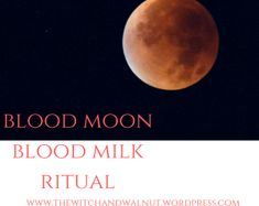 Blood Moon Spell & Ritual – The Witch & Walnut
