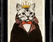 Ordered little cat king tonight. I think I'll put in my closet.