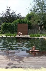 natuurlijke zwemvijver