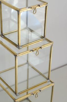 Glass boxes are a great way to display beautiful objects.