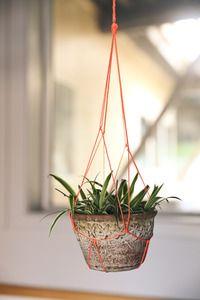 DIY Macrame Plant Hanger | Whimseybox