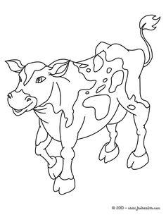Coloriage Du0027une Vache Réaliste. Un Coloriage Sur Les Animaux De La Ferme  Pour