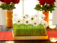 Neat centrepiece ideas .Really unique. I like the pencil vases and the green grass with daisies.