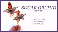SUGAR ORCHID How To: NO CUTTERS, NO VEINERS, NO MOLDS - Queen of Sheba S...