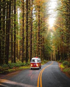 Olympic National Park with Jake Guzman, adventure, travelphotography and outdoor T1 Bus, Vw T1, Wolkswagen Van, Port Angeles Washington, Vintage Landscape, Combi Vw, Travel And Leisure, Weekend Trips, Belle Photo