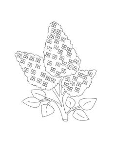 Printable Flower Coloring Pages, Coloring Pages For Kids, Flowering Shrubs, Free Printables, Lilac, Symbols, Flowers, Dibujo, Flowering Bushes