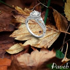 Captivating and irresistible diamond sparkle  http://www.paveb.com/round-halo-scrollwork-bright-cut-diamond-engagement-ring.html#970=127