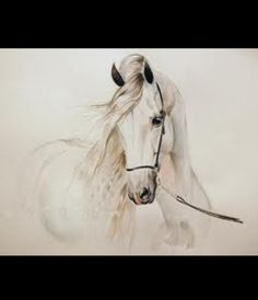 More horse paintings
