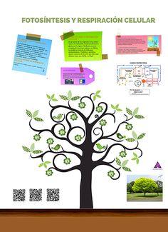 Entornos Aumentados de Aprendizaje | Realidad Aumentada en Educación