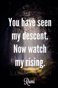This is the mindset we all need when we think of the narcissists in our life. Yes, you have seen my descent... NOW WATCH MY RISING!  Best revenge is doing well!